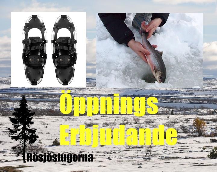 Öppningserbjudande