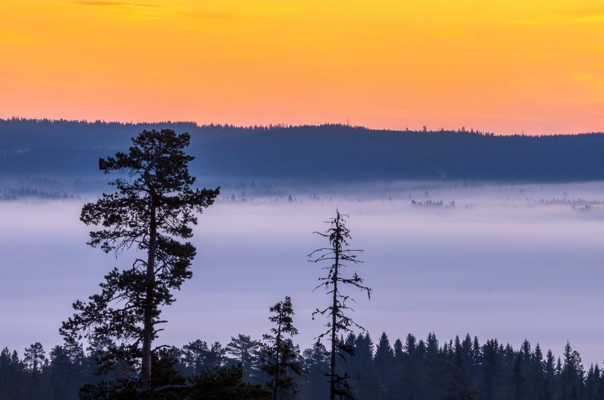 Fotoresa till Fulufjället i höstfärger