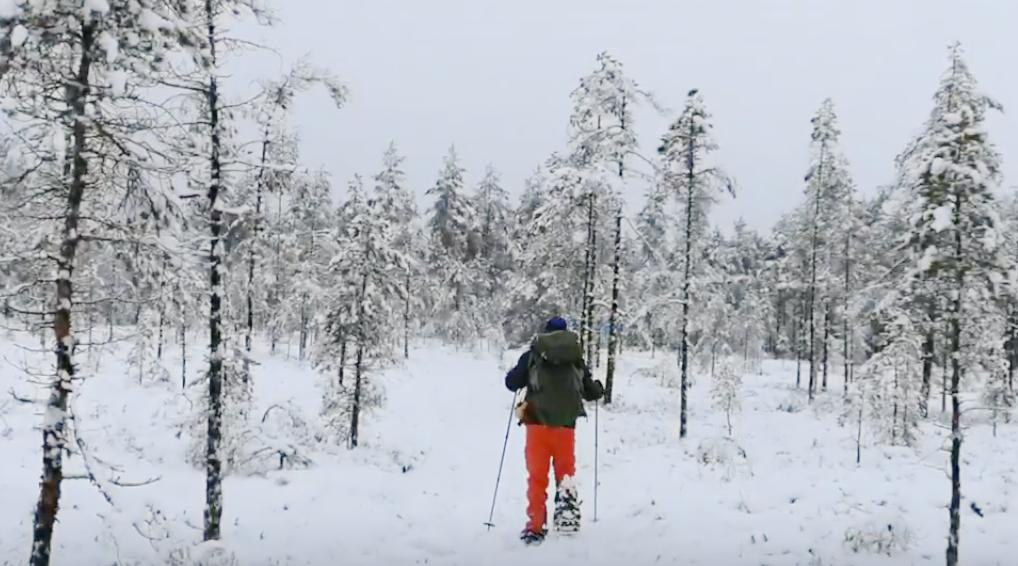 Snöskopaket / Snowshoing