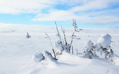 Snöskopaket