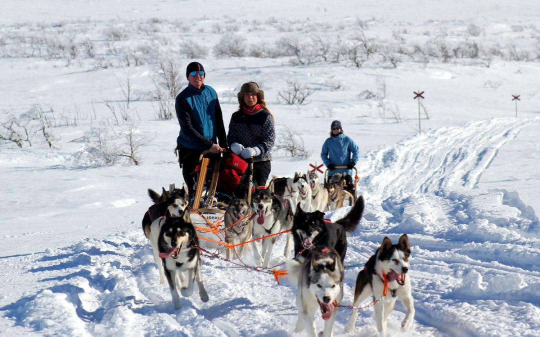 Hundspannsturer eller Fotoresa i höstfärger 2020